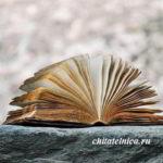 Школьное сочинение на тему «Роль книги в жизни человека»